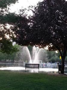 fountain bench tree